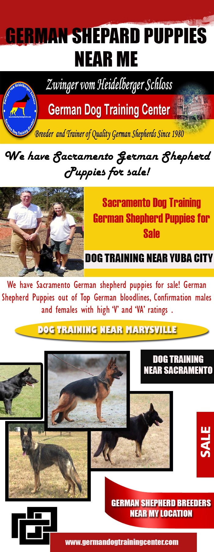 Train A German Shepherd Puppy Not To Bite